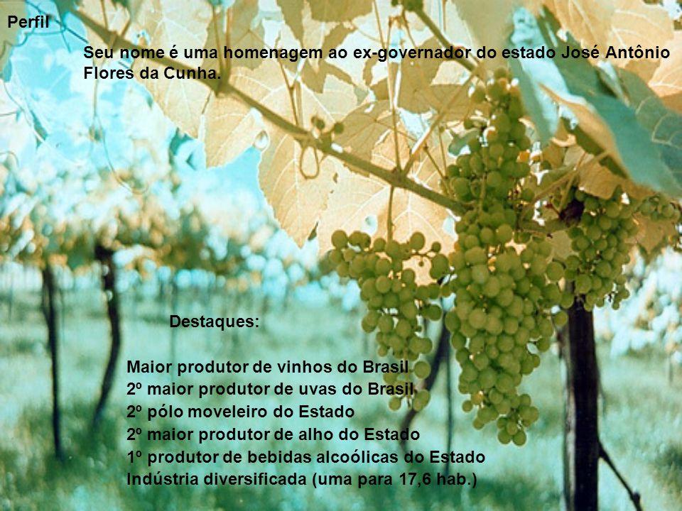 Perfil Seu nome é uma homenagem ao ex-governador do estado José Antônio Flores da Cunha. Destaques: