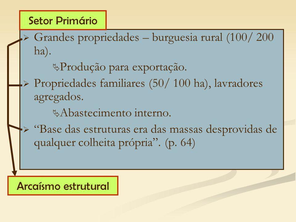 Grandes propriedades – burguesia rural (100/ 200 ha).