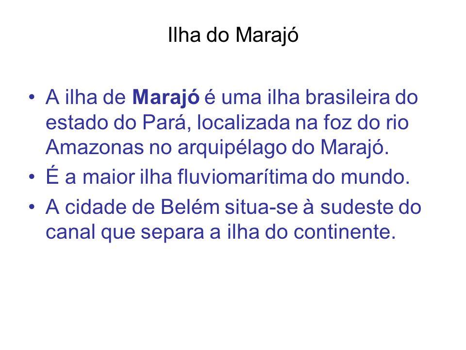 Ilha do Marajó A ilha de Marajó é uma ilha brasileira do estado do Pará, localizada na foz do rio Amazonas no arquipélago do Marajó.