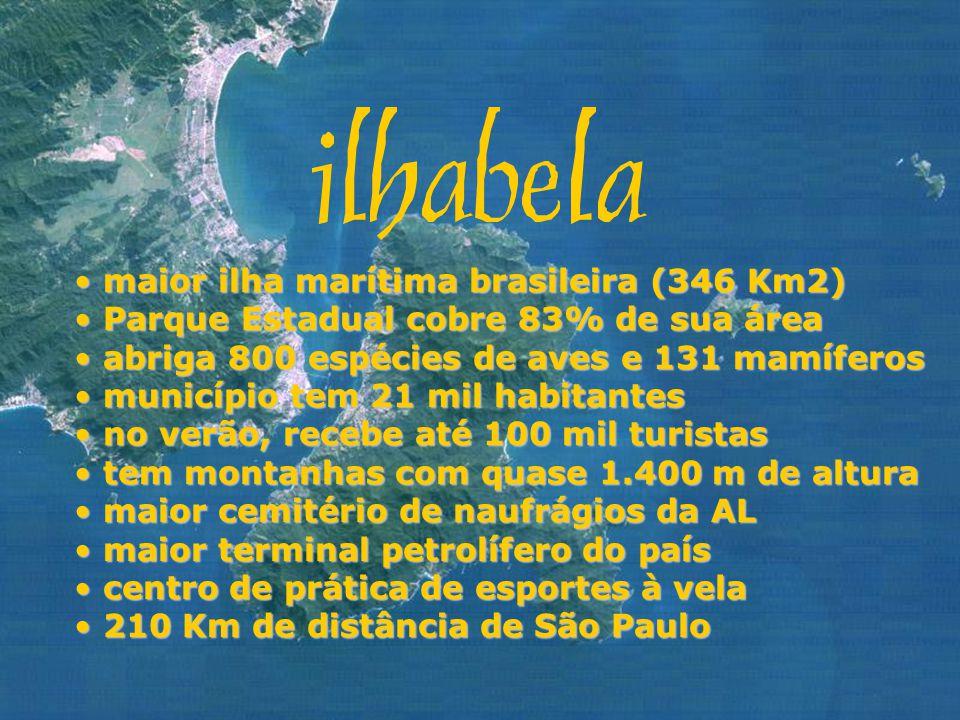 maior ilha marítima brasileira (346 Km2)