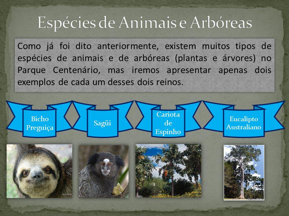 Espécies de Animais e Arbóreas