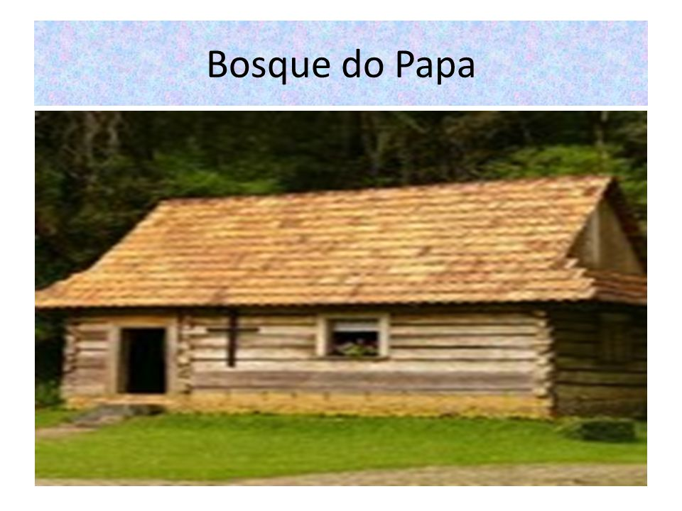 Bosque do Papa