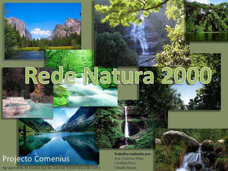 Rede Natura 2000 Projecto Comenius Trabalho realizado por: