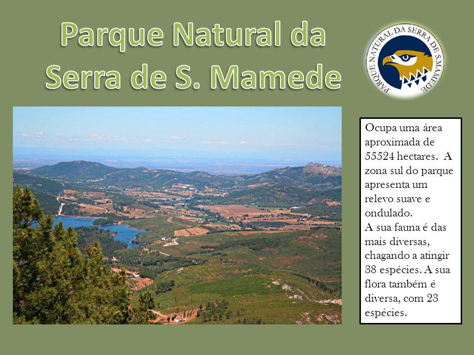 Parque Natural da Serra de S. Mamede