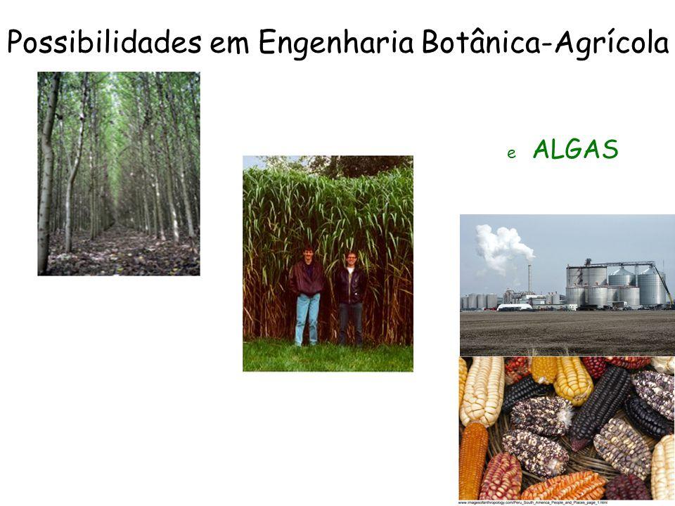 Possibilidades em Engenharia Botânica-Agrícola