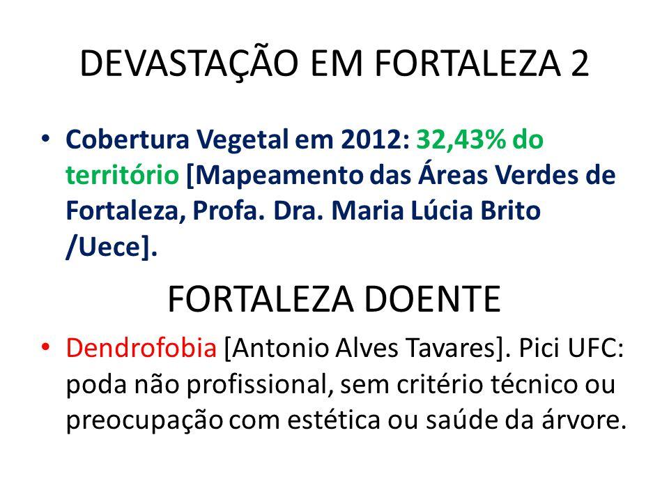 DEVASTAÇÃO EM FORTALEZA 2