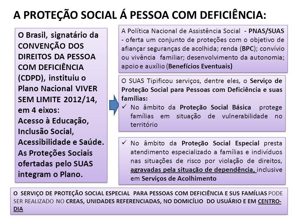 A PROTEÇÃO SOCIAL Á PESSOA COM DEFICIÊNCIA: