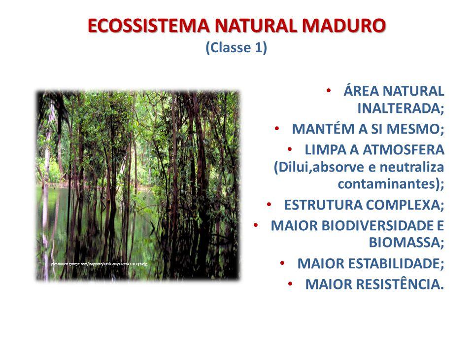 ECOSSISTEMA NATURAL MADURO (Classe 1)