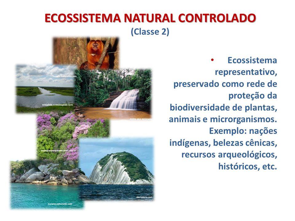 ECOSSISTEMA NATURAL CONTROLADO (Classe 2)