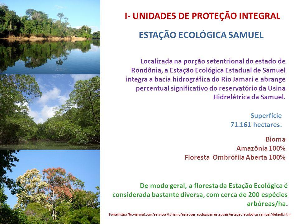 I- UNIDADES DE PROTEÇÃO INTEGRAL
