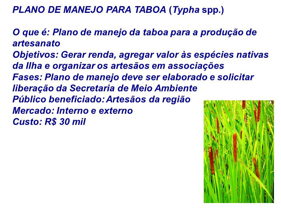 PLANO DE MANEJO PARA TABOA (Typha spp.)