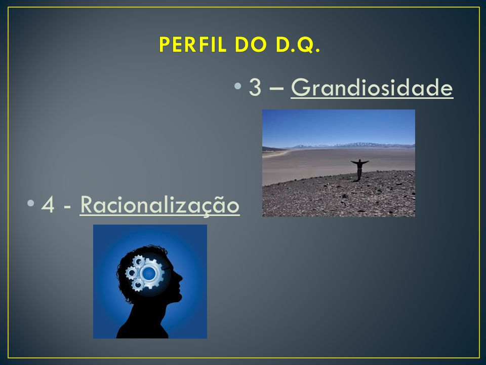 PERFIL DO D.Q. 3 – Grandiosidade 4 - Racionalização
