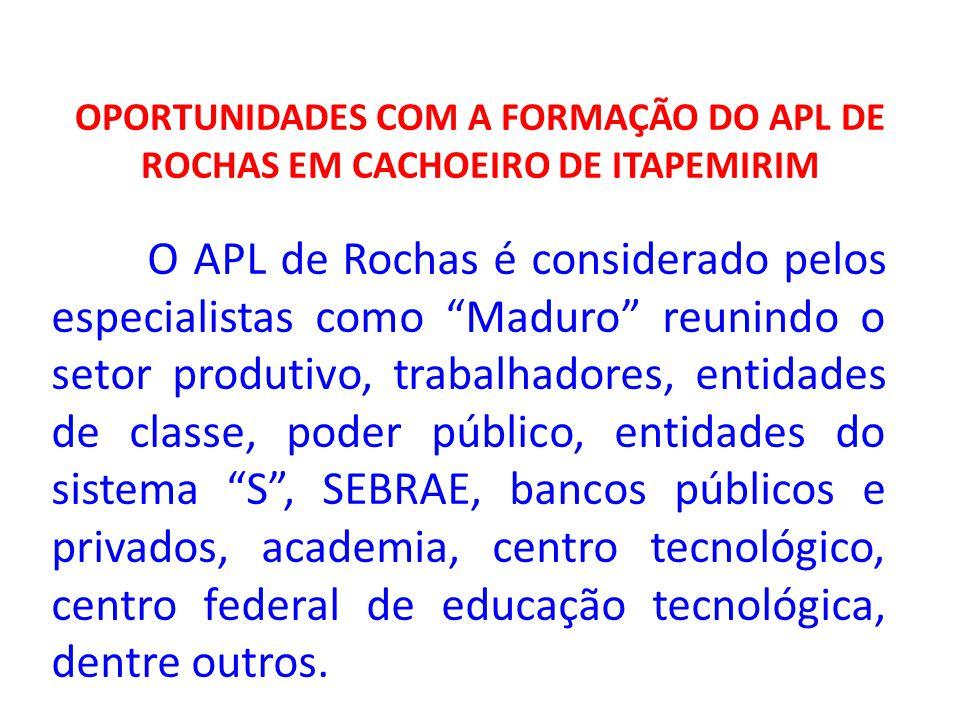 OPORTUNIDADES COM A FORMAÇÃO DO APL DE ROCHAS EM CACHOEIRO DE ITAPEMIRIM