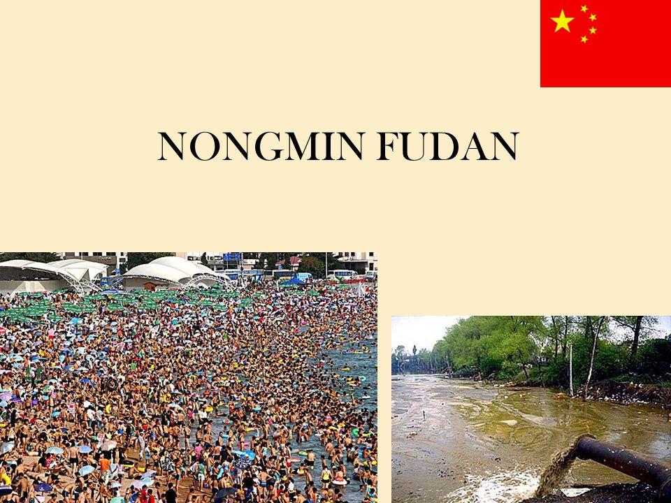 NONGMIN FUDAN