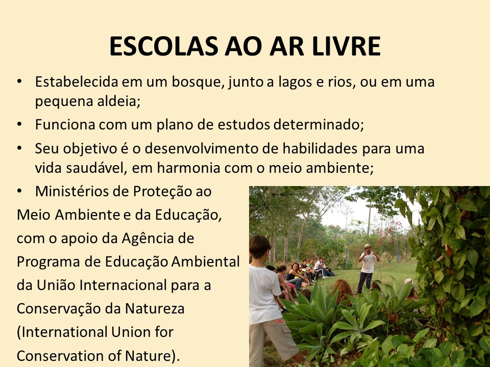 ESCOLAS AO AR LIVRE Estabelecida em um bosque, junto a lagos e rios, ou em uma pequena aldeia; Funciona com um plano de estudos determinado;