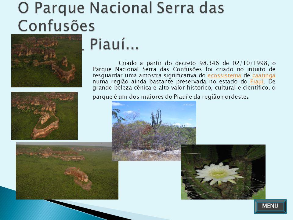 O Parque Nacional Serra das Confusões Caracol _ Piauí...