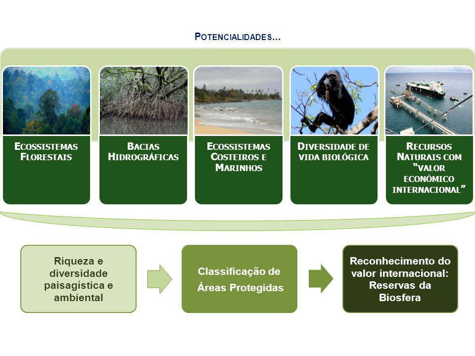 Riqueza e diversida de paisagíst ica e ambienta l Classific ação de