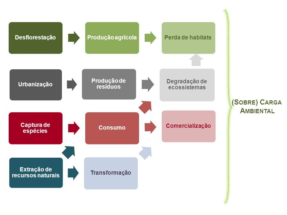 Degradação de ecossistemas Extração de recursos naturais