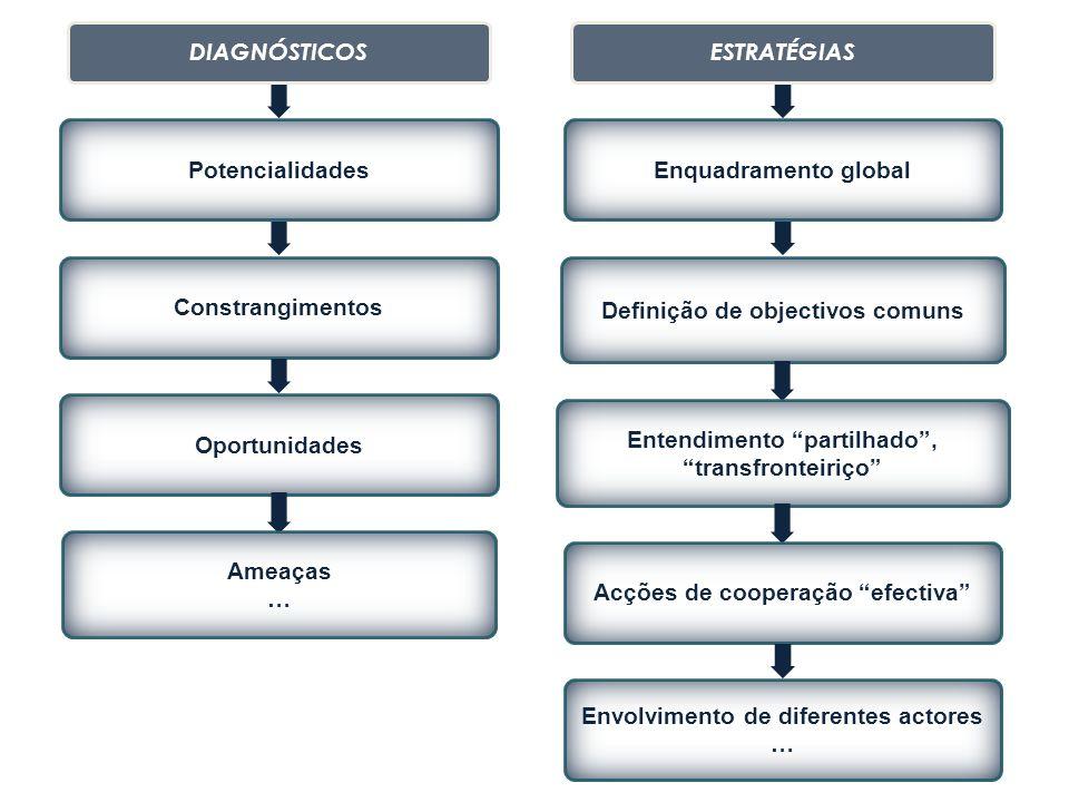 Definição de objectivos comuns