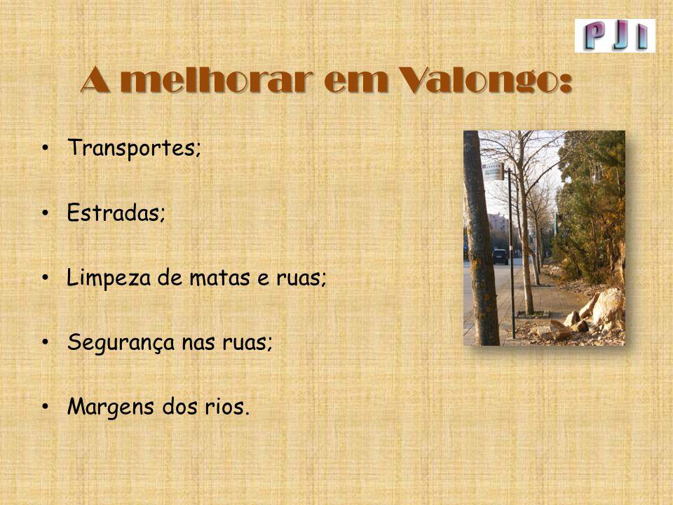 A melhorar em Valongo: Transportes; Estradas; Limpeza de matas e ruas;