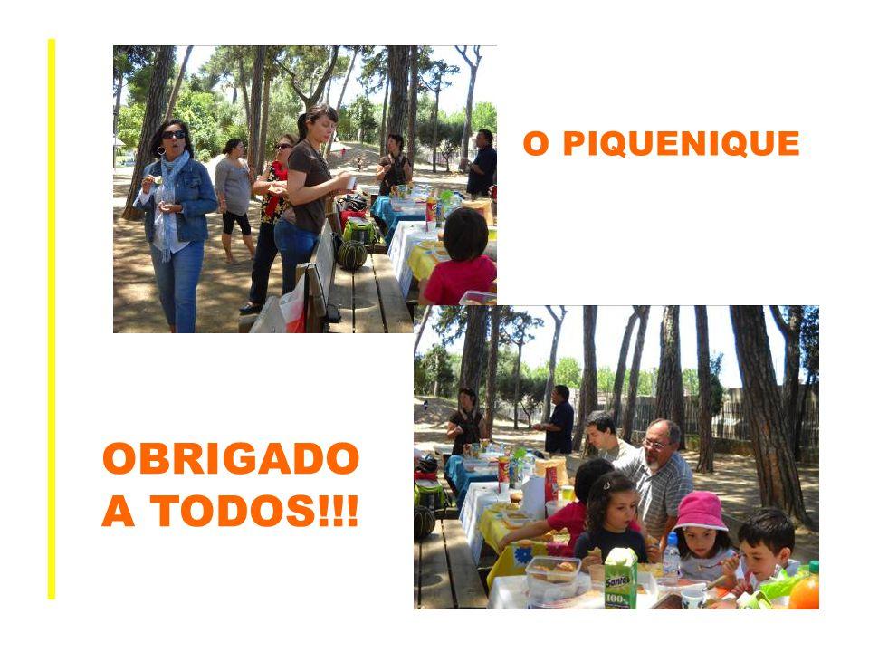 O PIQUENIQUE OBRIGADO A TODOS!!!