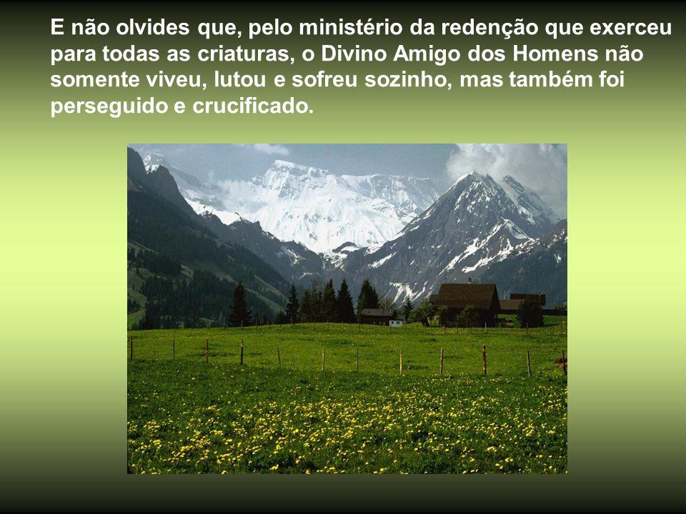 E não olvides que, pelo ministério da redenção que exerceu para todas as criaturas, o Divino Amigo dos Homens não somente viveu, lutou e sofreu sozinho, mas também foi perseguido e crucificado.