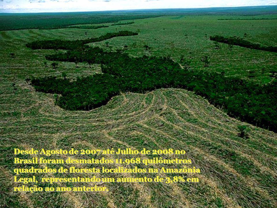 Desde Agosto de 2007 até Julho de 2008 no Brasil foram desmatados 11
