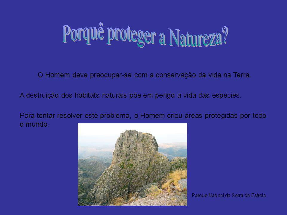 Porquê proteger a Natureza