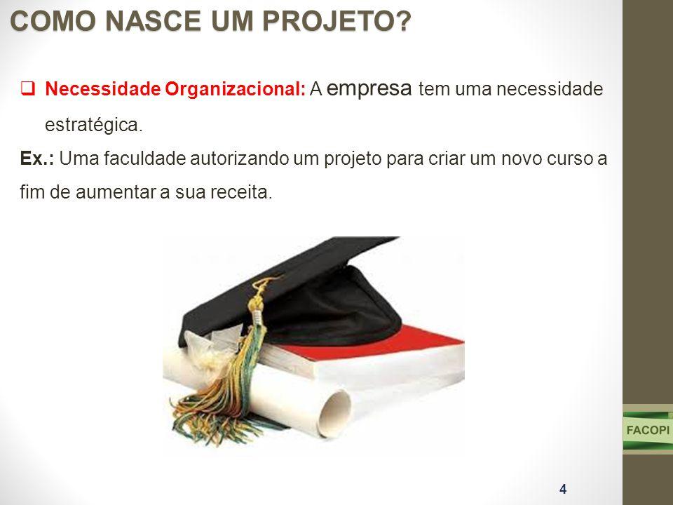 COMO NASCE UM PROJETO Necessidade Organizacional: A empresa tem uma necessidade estratégica.