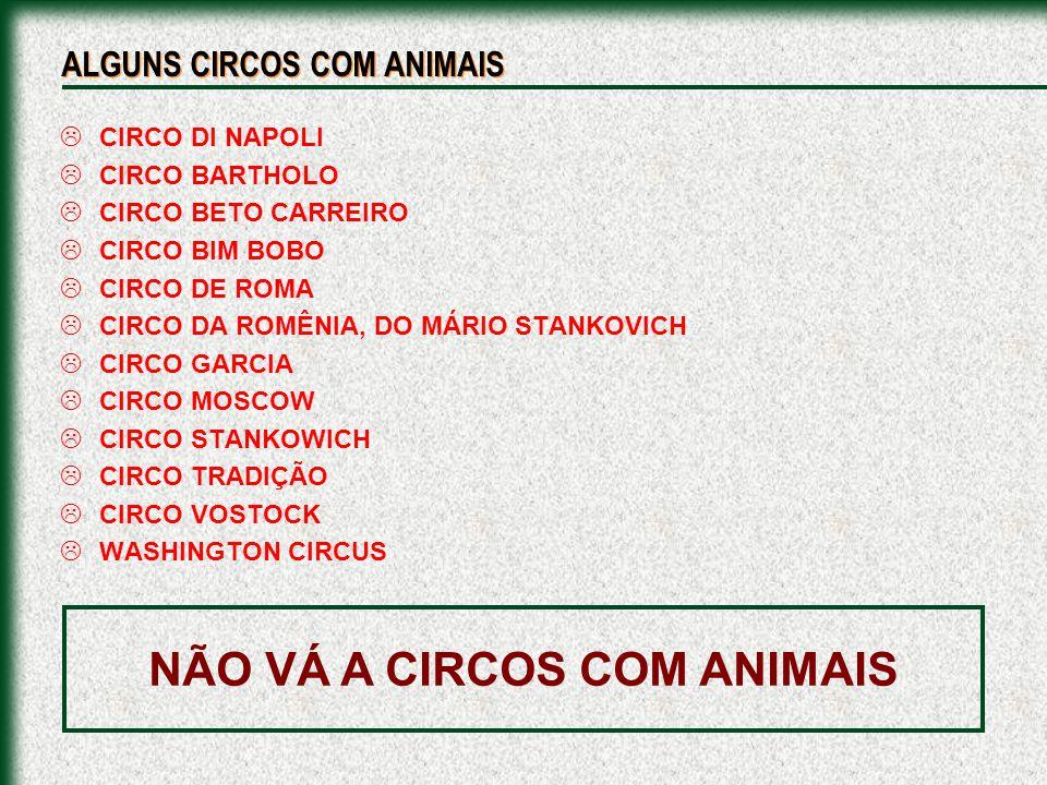 NÃO VÁ A CIRCOS COM ANIMAIS