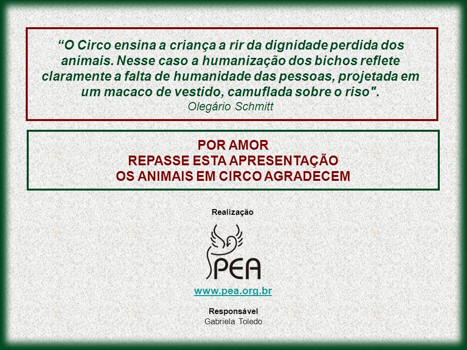 REPASSE ESTA APRESENTAÇÃO OS ANIMAIS EM CIRCO AGRADECEM