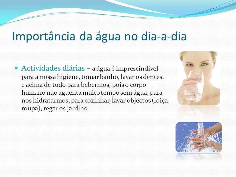 Importância da água no dia-a-dia