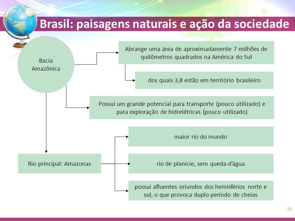 dos quais 3,8 estão em território brasileiro