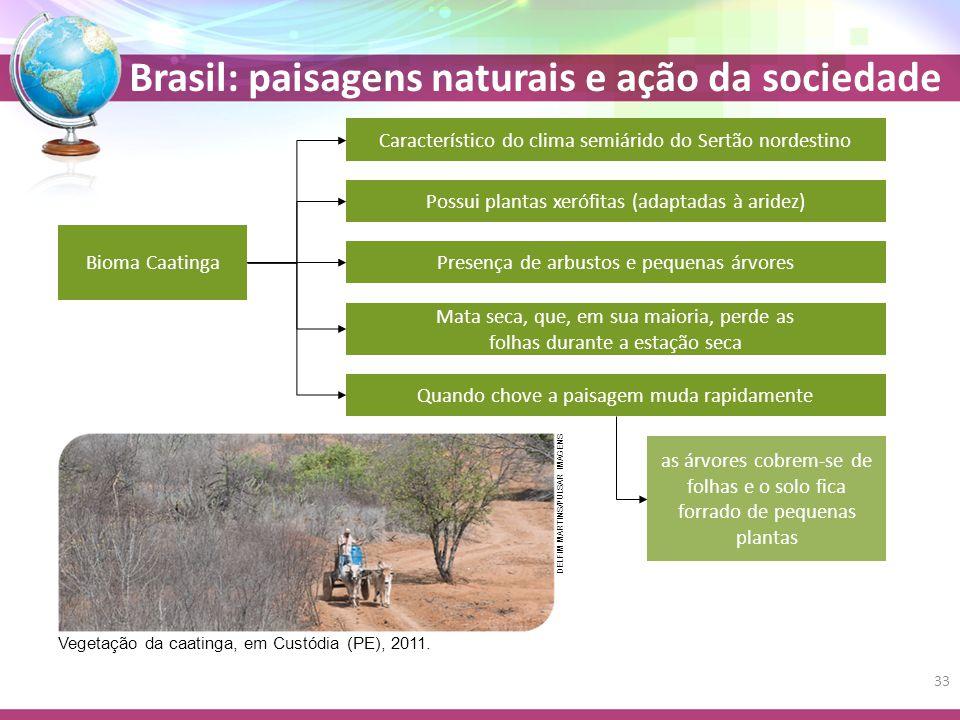 Característico do clima semiárido do Sertão nordestino