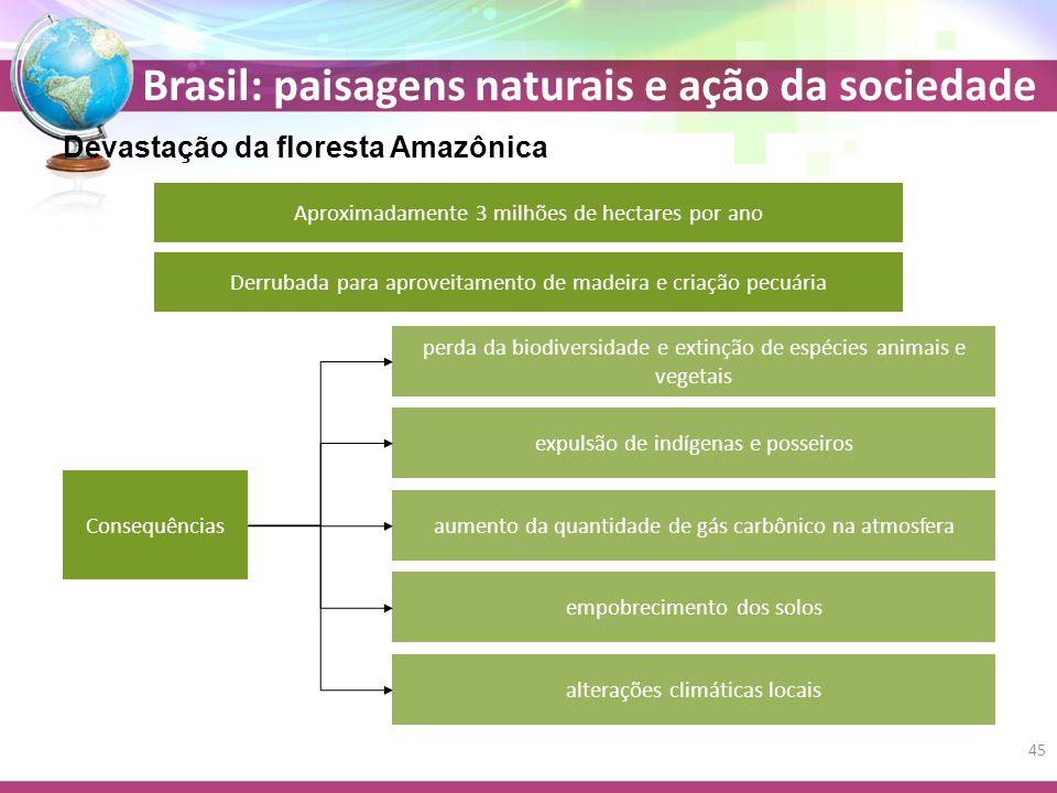 Devastação da floresta Amazônica