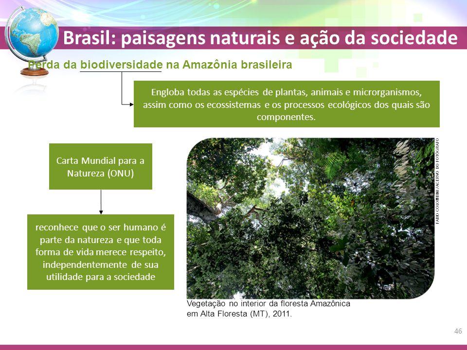 Carta Mundial para a Natureza (ONU)