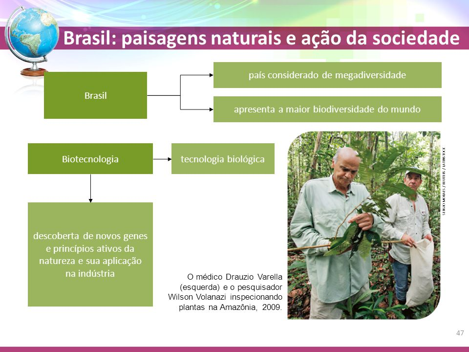 país considerado de megadiversidade Brasil