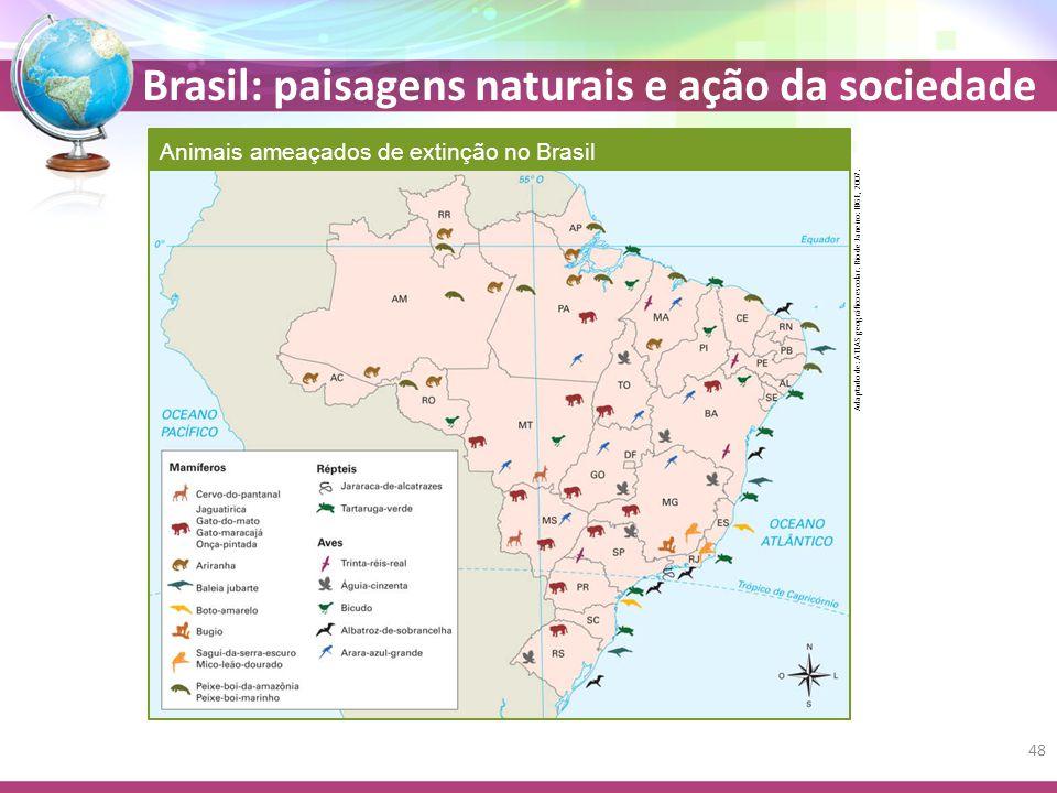Animais ameaçados de extinção no Brasil