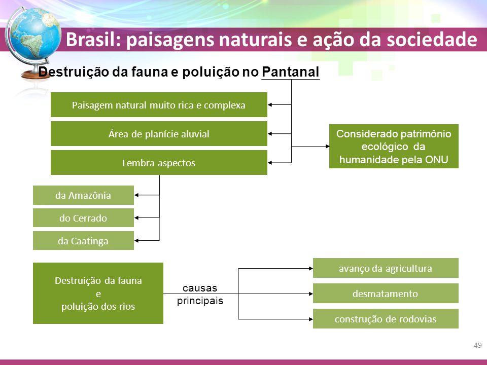 Destruição da fauna e poluição no Pantanal