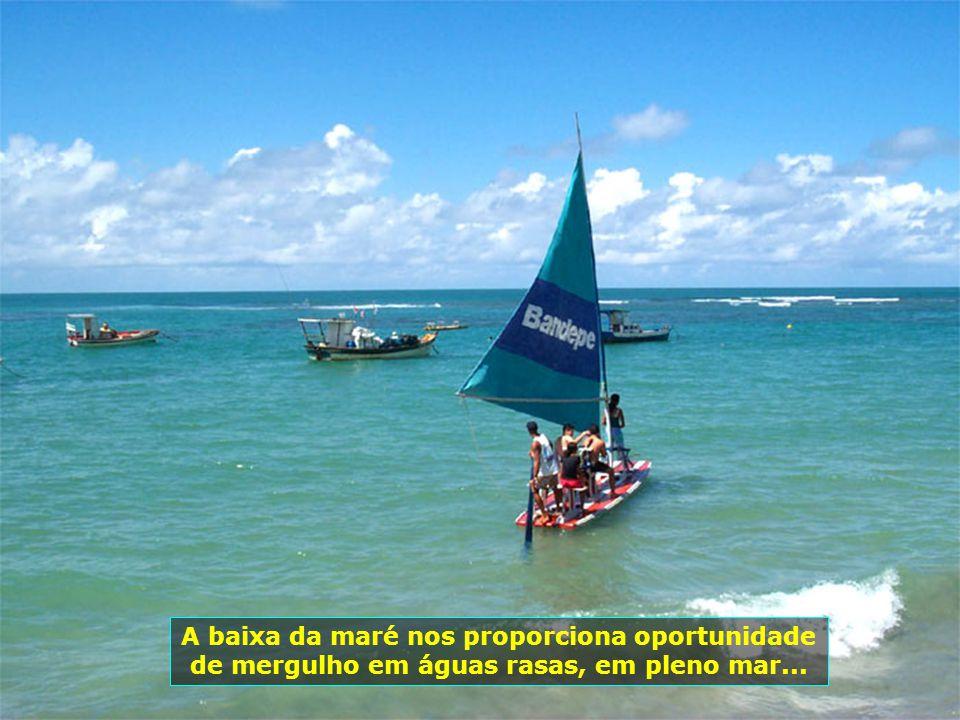 P0000760 - PORTO DE GALINHAS A baixa da maré nos proporciona oportunidade de mergulho em águas rasas, em pleno mar...