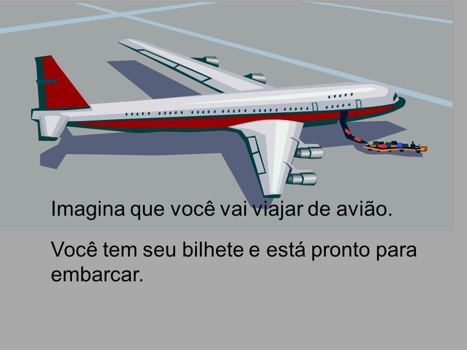 Imagina que você vai viajar de avião.