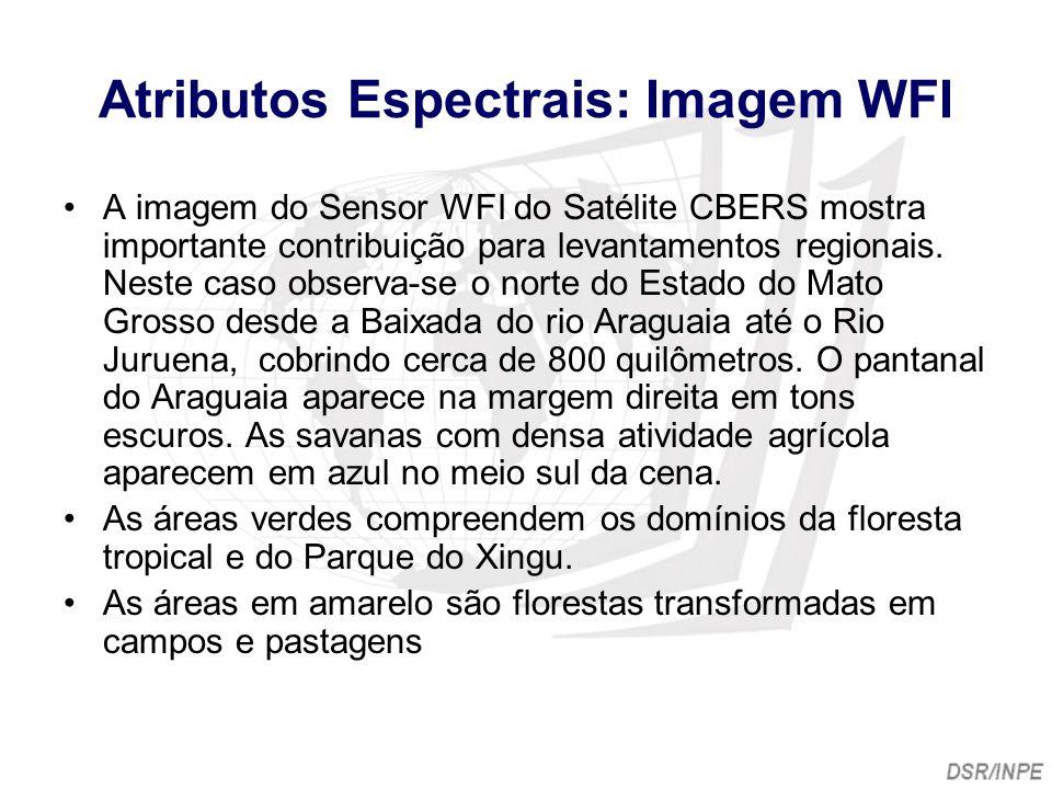Atributos Espectrais: Imagem WFI