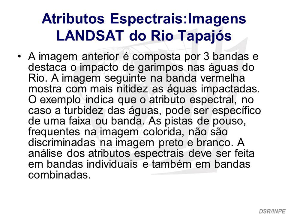 Atributos Espectrais:Imagens LANDSAT do Rio Tapajós