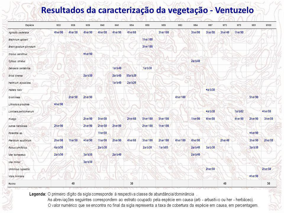 Resultados da caracterização da vegetação - Ventuzelo