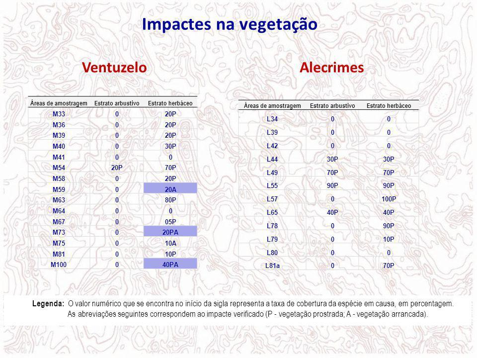 Impactes na vegetação Ventuzelo Alecrimes