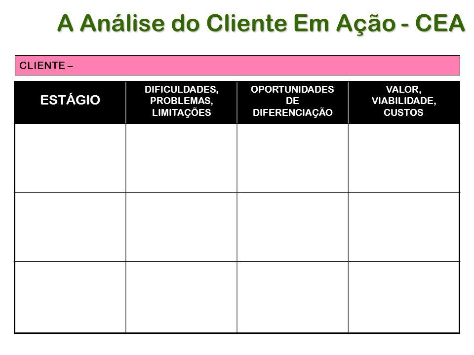 A Análise do Cliente Em Ação - CEA