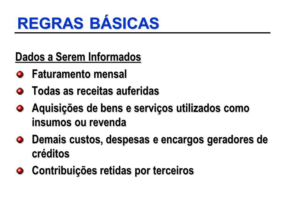 REGRAS BÁSICAS Dados a Serem Informados Faturamento mensal
