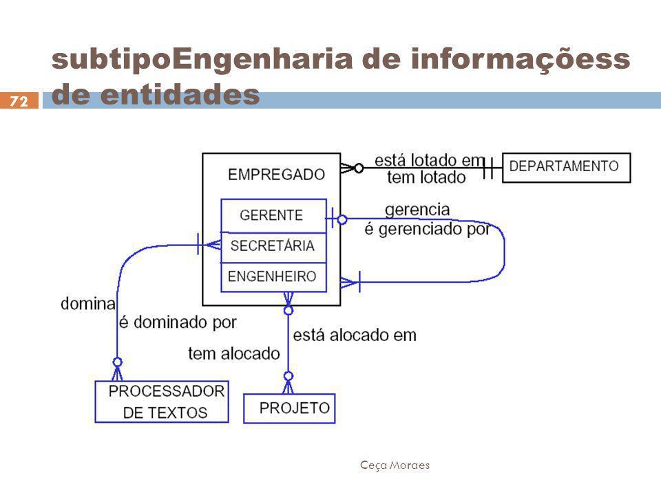 subtipoEngenharia de informaçõess de entidades