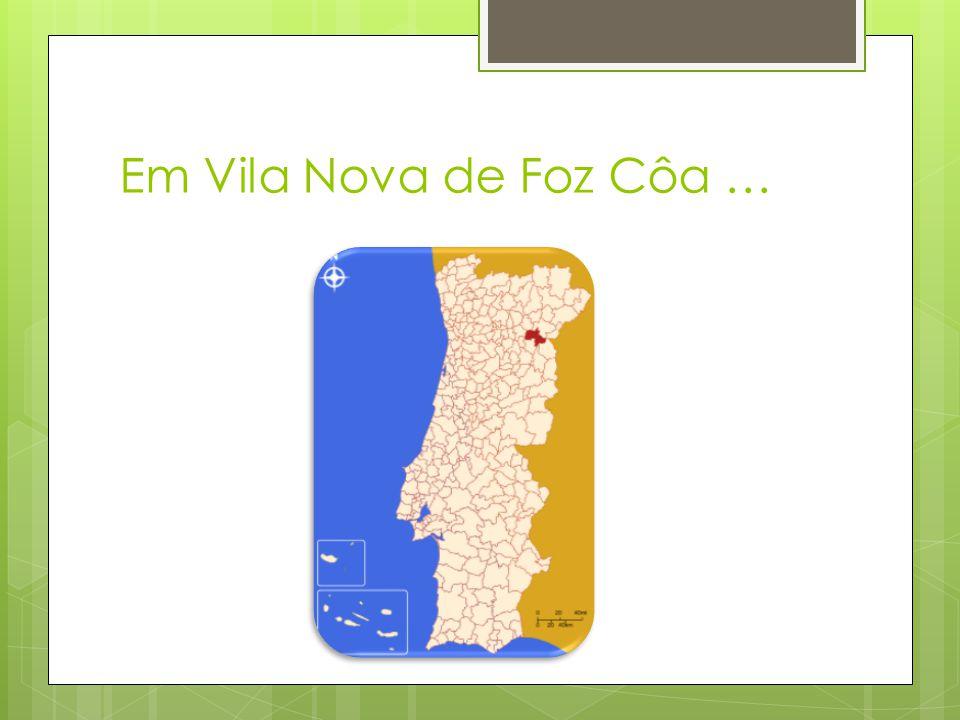 Em Vila Nova de Foz Côa …