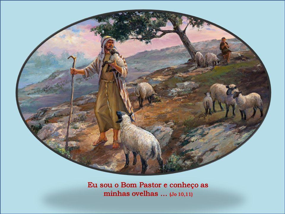 Eu sou o Bom Pastor e conheço as minhas ovelhas ... (Jo 10,11)